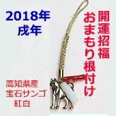 リアル犬紅白170--